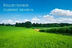 кадастр. оценка земель.jpg